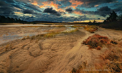 JM_CrabMeadowWindyDawn_11_20_16_58 (HarrySchue) Tags: crabmeadowbeach huntingtonny beach sunrise dawn clouds nature water sand nikon d800e serene seashore