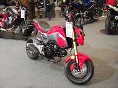 HONDA MSX 125 (John Steam) Tags: motorcycle motorbike motorrad mini honda msx 125 bikersworld 2016 salzburg austria wohnmobil