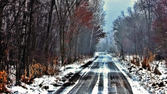 Down My Way (Bob's Digital Eye) Tags: bobsdigitaleye canon canonefs55250mmf456isstm flicker flickr landscape lane outdoor rural snow t3i trees winter winterinmn