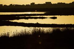 Sunset at Stagno di mistras (jan.stefka) Tags: canoneos7d stagnodimistras sardegna sardinie 2016 sardinia