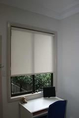 Roller Blind (Translucent Fabric)