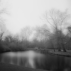 The lake (Massimo Margagnoni) Tags: world trip trees blackandwhite bw white lake black art 6x6 nature digital canon landscape poetry solitude alone photographer digitale natura hasselblad dreams 5d poesia minimalism minimalismo viaggi nero paesaggio olanda biancoenero massimo 2012 mkii mondo neterlands lagho naturepoetry absoluteblackandwhite bestcapturesaoi margagnoni
