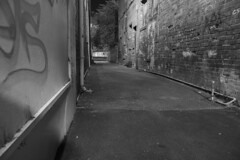 Alley (jmiller291) Tags: street urban blackandwhite slr monochrome night canon photography graffiti alley bricks streetphotography midnight dslr tagging shrubs ballarat 650d t4i bridgemall