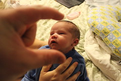 I'm crushing your head (bradleygee) Tags: boy cute face little henry newborn headcrush