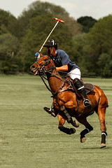 Horse-Power-1080 (Mr AT( Alec Trusler LRPS)) Tags: horses sussex events polo nikon70200 nikond700 sussexpolo