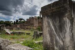 Forum romain, Rome