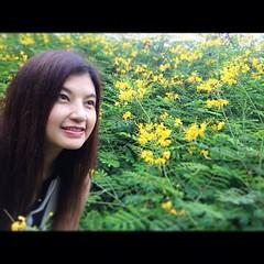 ❤❤❤ดอกไม้ไม่ว่ากลิ่นหอมเย้ายวนแค่ไหนก็ไม่อาจทำให้ใจหวั่นไหวสวยแต่รูปจูบไม่หอม ต้องจูบที่หัวใจนี่ กร๊ากกก...#ดอกไม้#สวนรถไฟ #สวน#thai #travel #thailand #instamood #iglike #instagood #instacute #anidnoi#noi#singer#sing