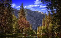 Yosemite Serenity (Kris Kros) Tags: california ca trees sky mountain clouds photoshop river bravo peaceful calm yosemite serenity kris hdr kkg photomatix kros kriskros hdrunleashed