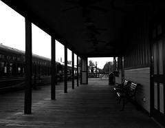 Station (D.Munoz-Santos) Tags: life blackandwhite bw abandoned monochrome station architecture train dark alone dream bilding dmunozsantos