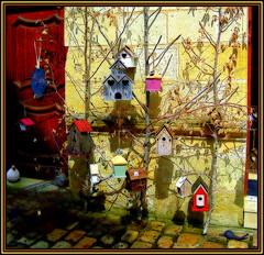Birds Town (Pifou 2010) Tags: city light shadow house france tree art colors birds shop town magasin couleurs snail etalage ombre arbres lumiere boutique walls stores maison curiosity escargot ville murs oiseaux azaylerideau curiosits antiquary 2013 antiquaire birdstown gerardbeaulieu pifou2010 storesdisplays