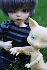 ADAD 221 / 365 Wolfe and the Fox (emmr_ {bjd}) Tags: bjd fairyland ante littlefee