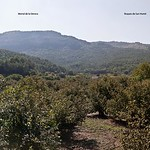 Panorama_Capafons_2acoplat copia