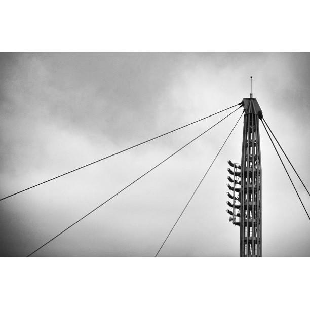 Electric Zoo Poo Poo. ©Laurie Markiewicz #lauriemarkiewicz #photography #randalsisland #electriczoo #triboro
