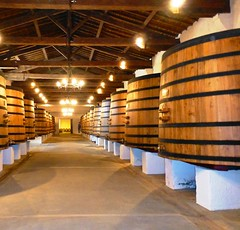 9667721135 2429bfc791 m 2013 Bordeaux Images Photographs Chateau Owners Wine Food Life