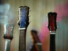 Sometimes the nicest thing to do with a guitar is just look at it... (Shelby's Trail) Tags: shop bokeh guitar tourist souvenir tiny eightdaysaweek hbw twtme bokehwednesday