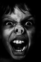 Grouiiiik (PaxaMik) Tags: window pig noir noiretblanc contraste grimace cochon n§b portraitnoiretblanc
