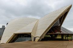 _DSC7240 (Abiola_Lapite) Tags: travel sydney australia australien nikkor operahouse d800   2013 2470mmf28g