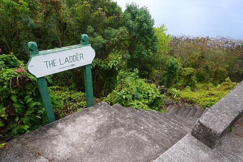 The Ladder, Saba