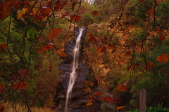 First Falls, Waterfall Gully, Adelaide (s.haydon) Tags: autumn leaves waterfall adelaide neutraldensity firstfalls cokinnd8