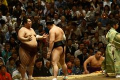 日馬富士 画像31