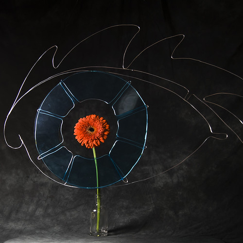 #4 Eye+flower