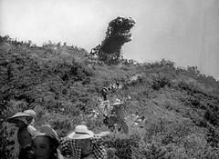 Godzilla coming up behind the hill, Godzilla (1954) (Tom Simpson) Tags: 1954 godzilla kaiju gojira