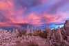 Turn Around And Look Behind You! (Mimi Ditchie) Tags: easternsierra fall fallcolor monolake lake tufa tufas tufaformations sunset clouds pinkclouds southtufa monolakesouthtufa getty gettyimages mimiditchie mimiditchiephotography