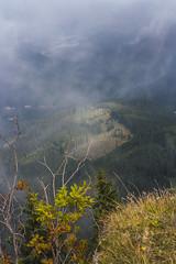 Mountain Mist (Miroslava Balazova LAZAROVA) Tags: forest nature landscape beauty slovakia janska dolina mist trees mountain rock hiking view