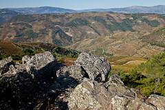 So Leonardo da Galafura (JOAO DE BARROS) Tags: barros joo galafura landscape portugal douro