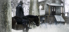 Etre heureux  cheval, c'est tre entre ciel et terre,  une hauteur qui n'existe pas. Jerome Garcin (xxStanxx (Client list closed)) Tags: secondlife mgmens maisondelamiti horse winter valekoer urworld maleshop wltb
