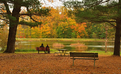 the view (CU TEO MD) Tags: landscape maryland lake water trees autumn leaves people ngc twop soe artofimages simplysuperb naturebynikon nikon d500 28300mm bench table picnic park outdoor explore