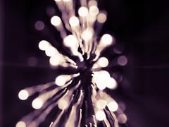 LAST WEEK NOVEMBER- December 01, 2016-5 (temryck) Tags: christmas tree light neon zoom effect