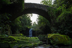 Jesmond Dene Waterfall and Bridge (Northern Kev) Tags: jesmond jesmonddene waterfall water green rocks moss nikon nikond7200 d7200 northeast newcastle england longexposure exposure bridge ouseburn river stream ouseburnriver