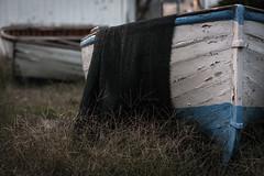 Storie_ormai_finite (Danilo Mazzanti) Tags: danilo danilomazzanti mazzanti wwwdanilomazzantiit fotografia foto fotografo photography photos barche abbandono mare vecchio riposo multedo