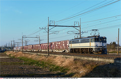 JRF_EF65-2037GB_Hasuda_080314 (Catcliffe Demon) Tags: railways japan japanrailimages2014 saitamaprefecture jrf jr貨物 jrfreight intermodal containertrains ef652000 bobobo 1500vdc 直流1500v