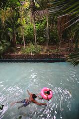(Benoms) Tags: padre hija daughter father family nadando agua water tropical trpical palmeras alberca swim swimming aslvavidas padreehija recuerdos keepthefight