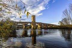 Puente Medieval de Frias (Burgos) (Javier Escribano) Tags: puente bridge medieval agua water rio river ebro canoneos550d paisaje landscape burgos frias
