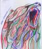 oso a lapicero (ivanutrera) Tags: lapicero draw dibujo drawing dibujoenboligrafo animal sketch sketching bear oso boligrafo dibujoalapicero wild wildlife