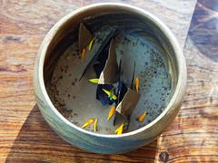Chocolate Pot De Creme (dcstep) Tags: montereypeninsula california usa allrightsreserved copyright2016davidcstephens dxoopticspro112 sierramar restaurant ocean oceanview overlook pacificocean bigsur ca f4a0328dxo chocolatepotdecreme