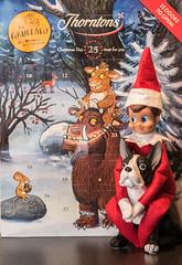 Elf on a shelf 3/24 (William Matthews Photography) Tags: elfonashelf buddy nikon d750 afsnikkor85mmf18g 2016