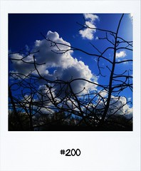 """#DailyPolaroid of 16-4-12 #200 • <a style=""""font-size:0.8em;"""" href=""""http://www.flickr.com/photos/47939785@N05/6942762854/"""" target=""""_blank"""">View on Flickr</a>"""
