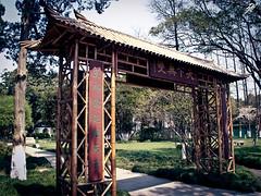 Tinglin (El Negro Vikingo) Tags: china door gardens garden puerta ancient gate asia bambu tinglin