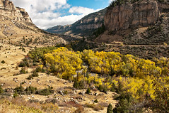 Wyoming 12 (Screenings1) Tags: wyoming bighornmountains tensleepcanyon usroute16