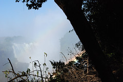 Victoria Falls_2012 05 24_1711 (HBarrison) Tags: africa hbarrison harveybarrison tauck victoriafalls zimbabwe zambeziriver mosioatunya