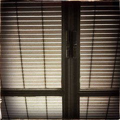 Window (feliperodriguez) Tags: stilllife abstract window pattern blind shutters blinds windowpane
