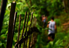 (berturu) Tags: forest trekking thailand jungle tribes chiangrai