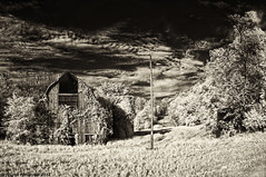 Old barn along Hwy. 14 (citrusjig) Tags: trees sky bw wisconsin barn work spring driving pentax driveby infrared toned manualfocus kx clearglass fullspectrum zenitar16mmf28 converteddslr bw090redfilter ruralworld defunctsilo