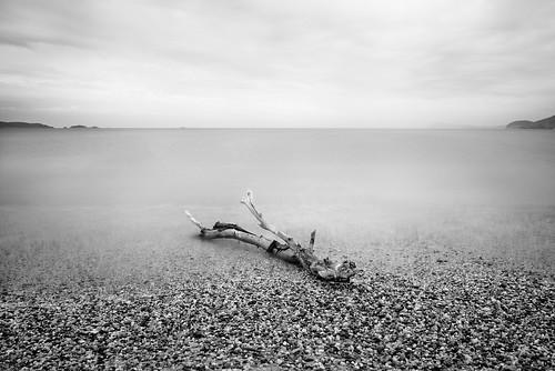 timeless [Explored] by Thomas Leth-Olsen, on Flickr