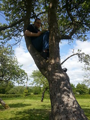 "Sevenforce reading in a tree • <a style=""font-size:0.8em;"" href=""http://www.flickr.com/photos/76114232@N04/8913300104/"" target=""_blank"">View on Flickr</a>"