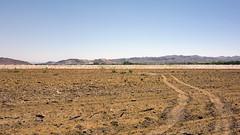 Preparing New Wetlands (ken mccown) Tags: lasvegas nevada wetlands landpreparation clarkcountywetlands